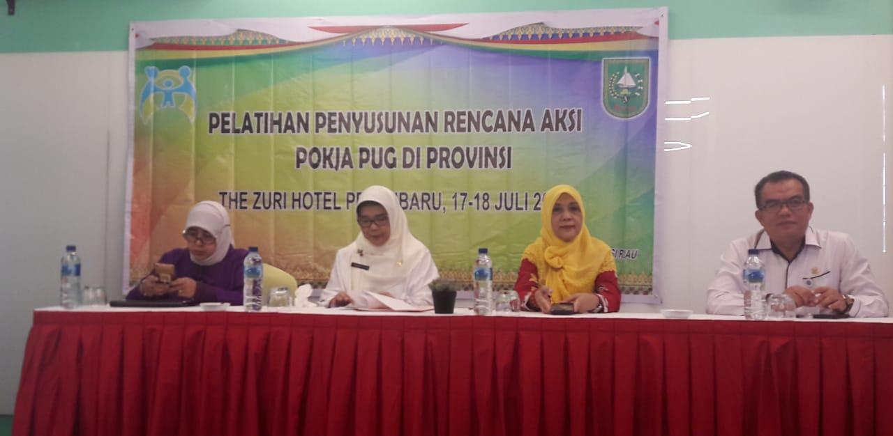 Pelatihan Penyusunan Rencana Aksi Program Kerja Pengarusutamaan Gender Di Provinsi Tahun 2019