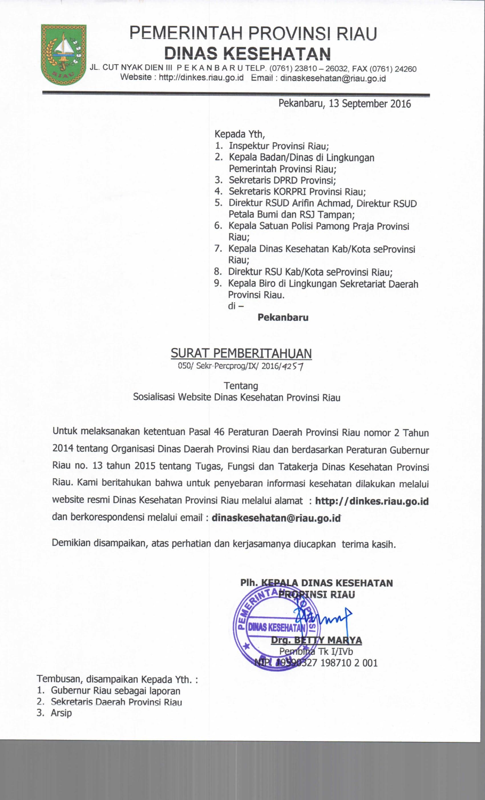 Sosialisasi Website Dinas Kesehatan Provinsi Riau Satuan